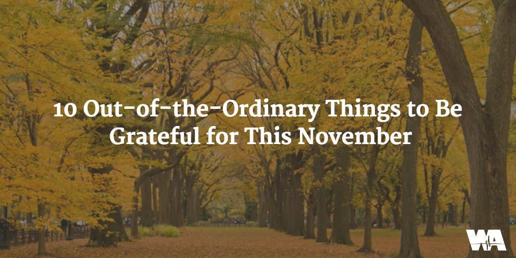 10 Things to Be Grateful for This November